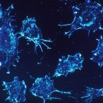 A group of scientists is taking the first steps to find a universal cancer vaccine