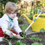 What science says: gardening is good for you?