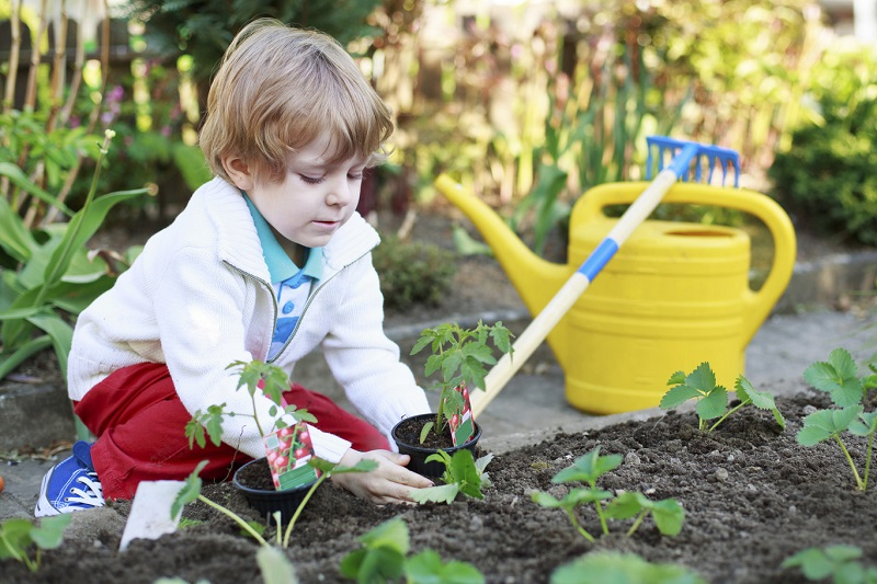 what-science-says-gardening-is-good-for-you