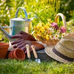 5 Tips for a natural healthy garden