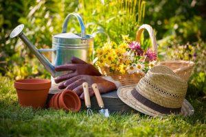 natural healthy garden